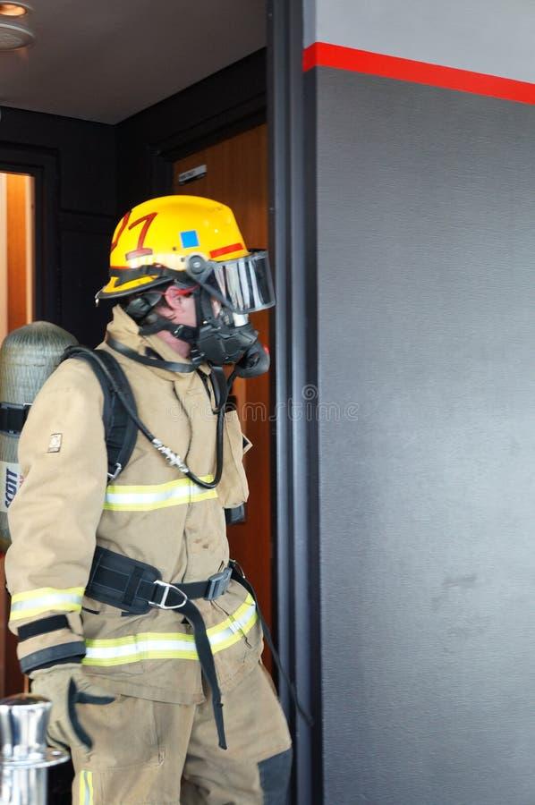 Vigile del fuoco - Auckland, Nuova Zelanda immagine stock libera da diritti