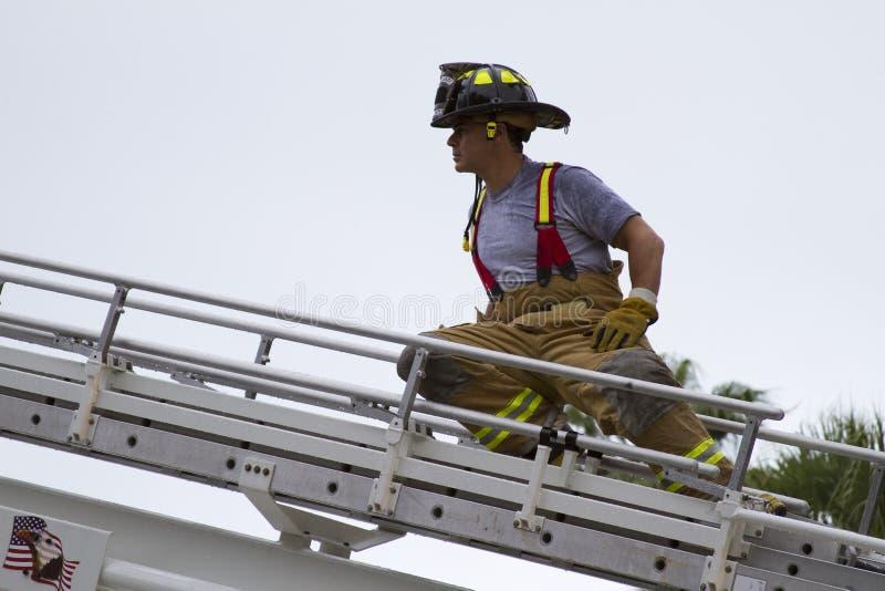 Vigile del fuoco sulla scaletta immagine stock libera da diritti