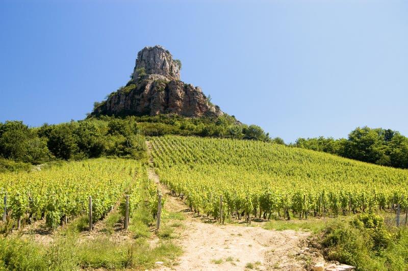 Vigna della Francia Borgogna con la roccia fotografie stock