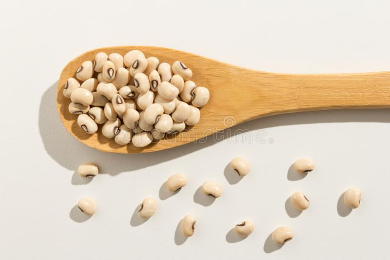 Black Eyed Pea legume. Healthy grains on a wooden spoon. White b. Vigna unguiculata is scientific name of Black Eyed Pea legume. Also known as Goat Pea royalty free stock photos