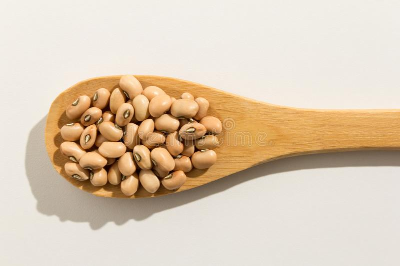 Cowpea legume. Nutritious grains on a wooden spoon on white back royalty free stock photo