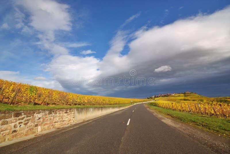 vigne d'artère d'autoroute photos libres de droits
