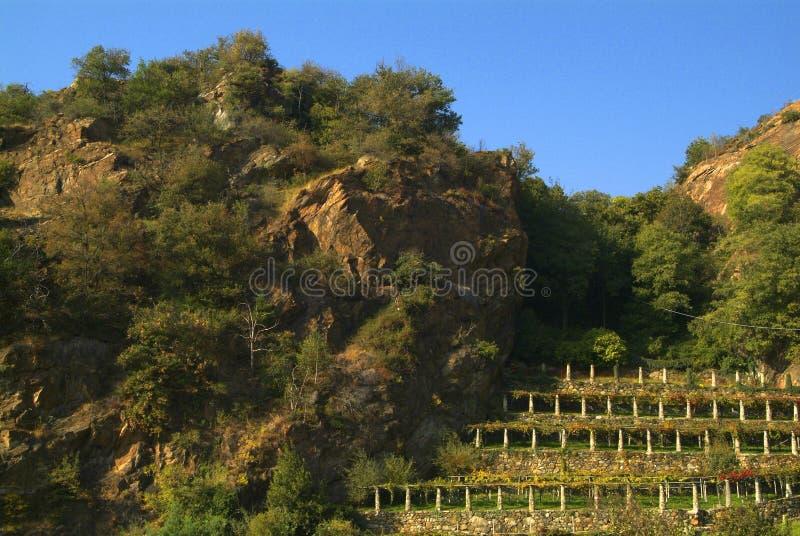 Download Vigne Di Canavese - Vicino Al Piccolo Villaggio Cesnola, Italia Fotografia Stock - Immagine: 103084894