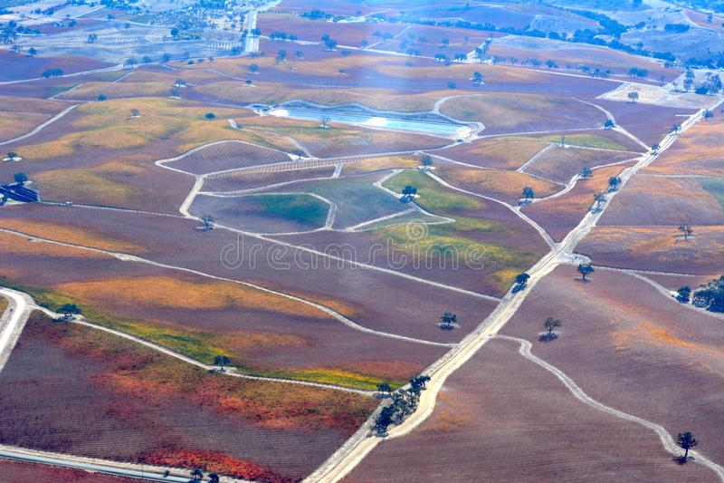 Vigne osservate da un aeroplano - colori stupefacenti di caduta di Paso Robles di autunno fotografia stock
