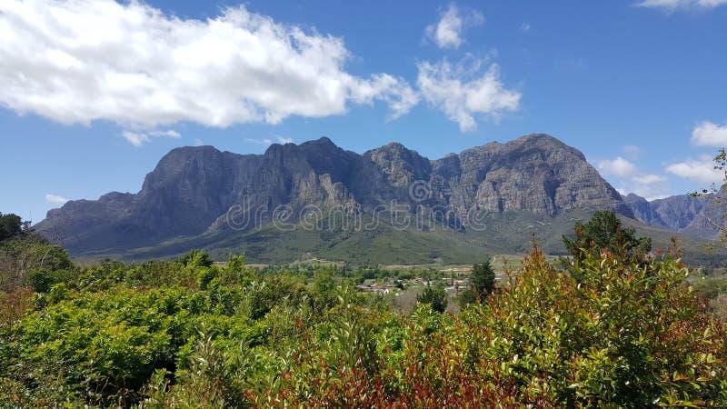 Vigne Sudafrica di Cape Town fotografia stock