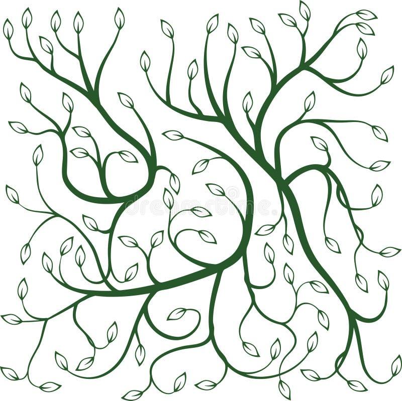 Vignes bouclées vertes avec des feuilles illustration libre de droits
