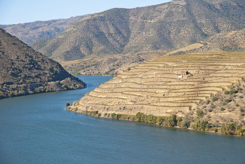 Vignes chez Douro River Valley, Portugal images stock