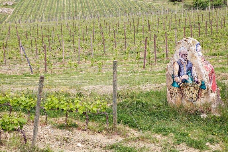 Vignes toscanes photos stock