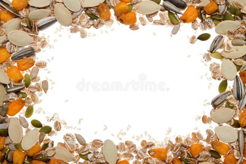 Vignete do fundo da grão, da semente e dos cereais imagem de stock