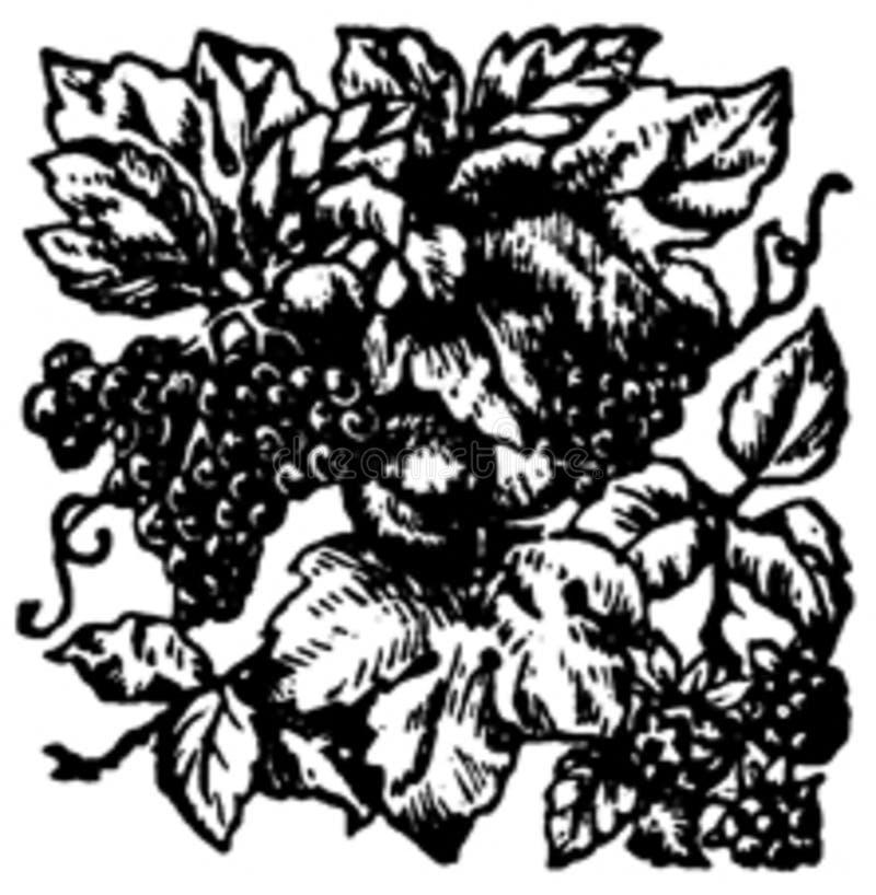 Vignette-008 Free Public Domain Cc0 Image