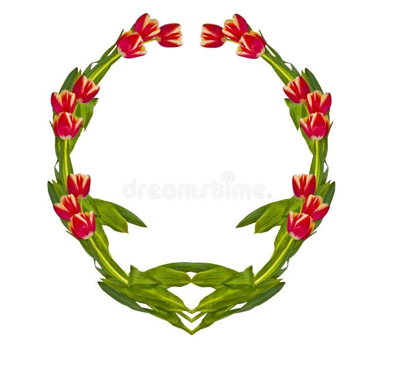 Vignette von den Tulpen stockfoto