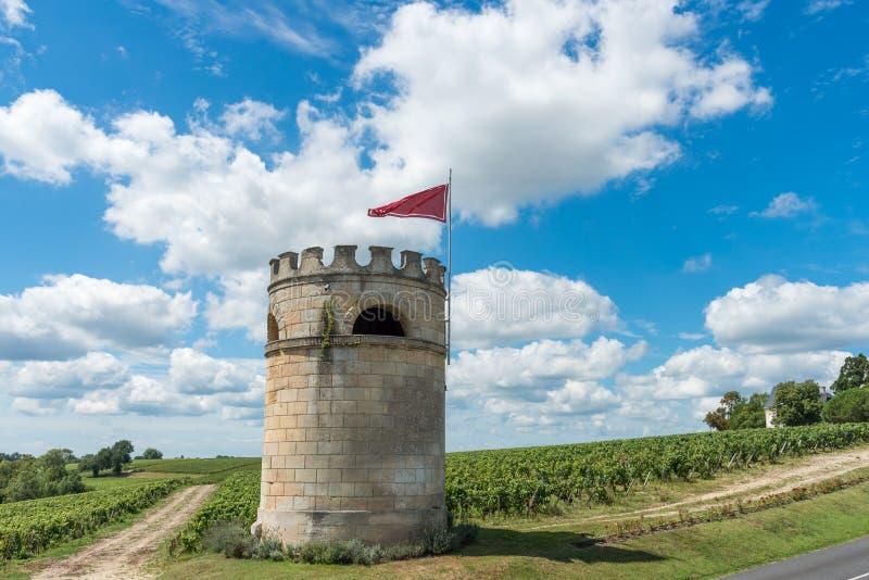 Vignoble dans Medoc près de Bordeaux dans les Frances photos libres de droits