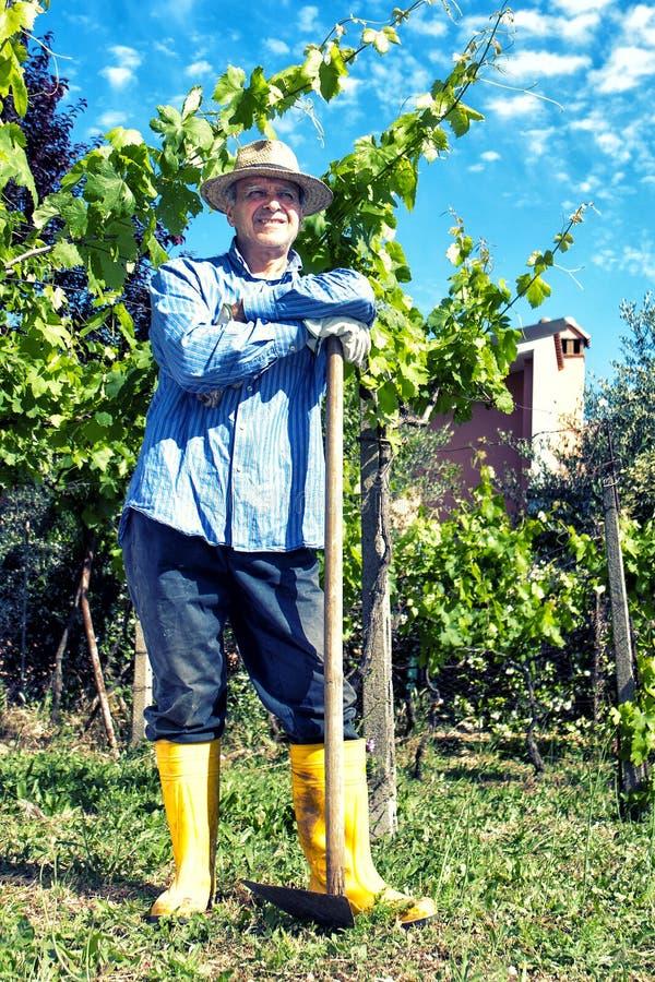 Vignoble de Straw Hat Spade Portrait Break d'agriculteur image stock
