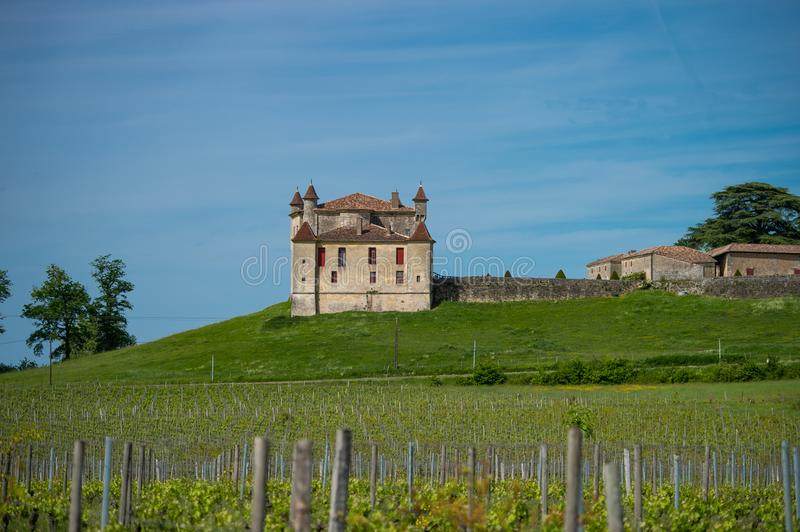 Vignoble et Chateau de Monbadon, région de Bordeaux, France photo stock