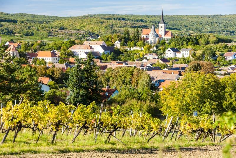 vignoble et Pulkau, Autriche photo libre de droits