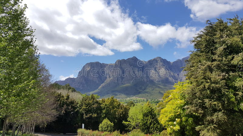 Vignobles Afrique du Sud de Cape Town photos libres de droits