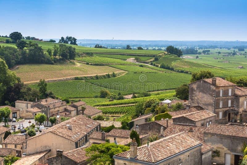 Vignobles dans St Emilion, France photo libre de droits