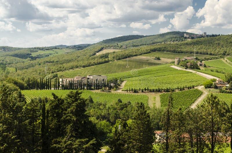 Vignobles de chianti en Toscane image libre de droits