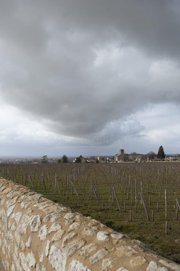 Vignobles de Saint Emilion avec l'église ruinée, Bordeaux, France photo stock