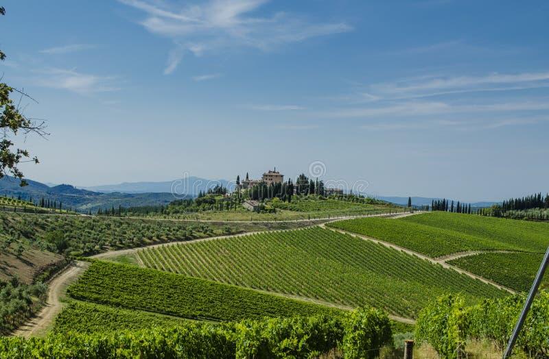 Vignobles du Toscan de chianti photographie stock