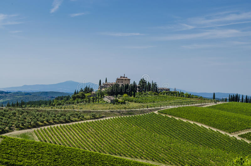 Vignobles du Toscan de chianti de secteur photos stock