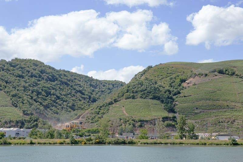 Vignobles par la rivière le Rhône, France photo libre de droits
