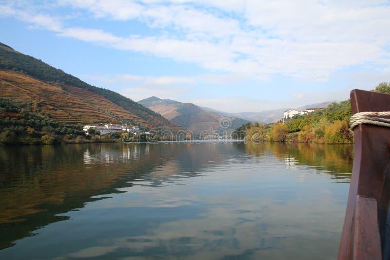 Vignobles sur les banques de la rivière Douro photos stock