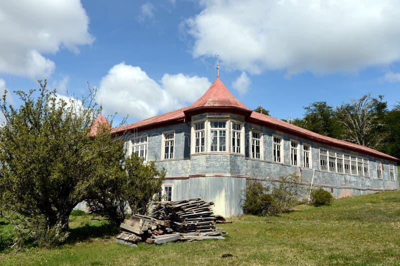 Vigogna d'annata della proprietà in Tierra del Fuego immagine stock libera da diritti