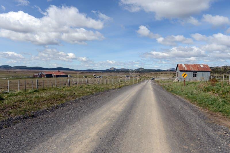 Vigogna d'annata della proprietà in Tierra del Fuego fotografie stock libere da diritti