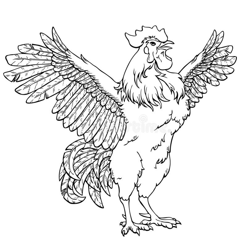 Free Vigorous Rooster Black Contour On White Royalty Free Stock Photography - 79920037