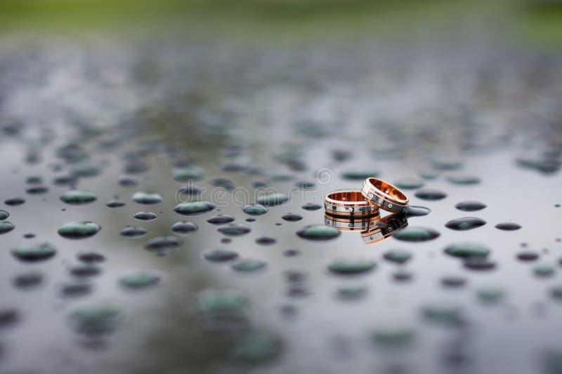 Vigselringar i regnet fotografering för bildbyråer