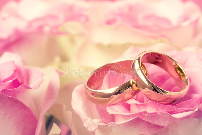 Vigselringar med den härliga rosa blomman arkivbild