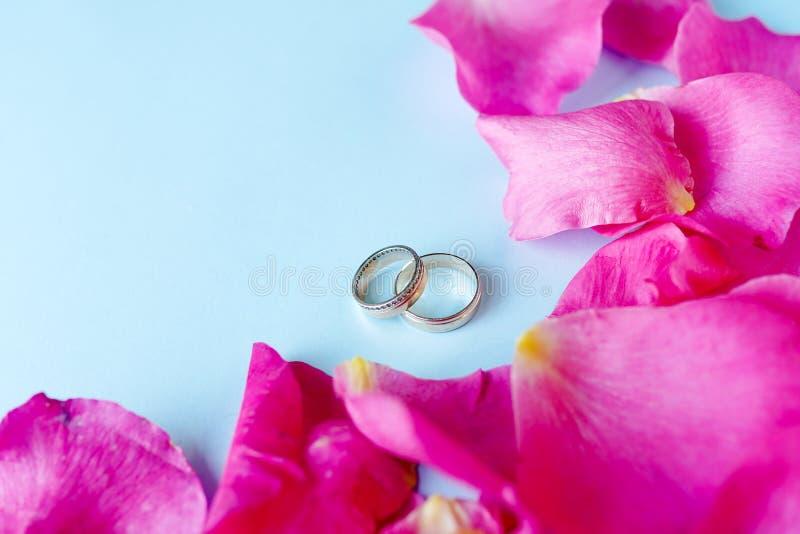 Vigselringar på blå bakgrund med blommarosor, kopieringsutrymme F?r?lskelse f?rbindelse royaltyfria foton