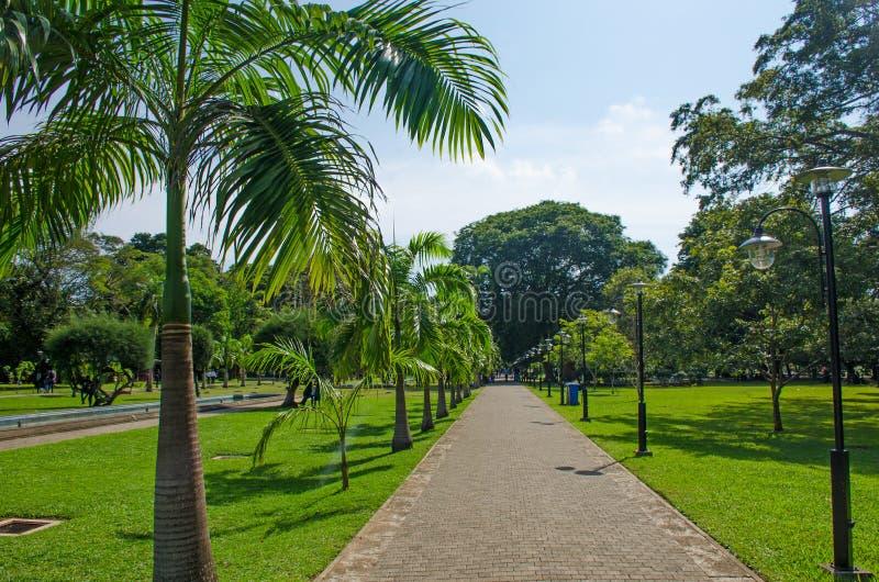 Viharamahadevi parkerar till staden av Colombo av Sri Lanka royaltyfri bild