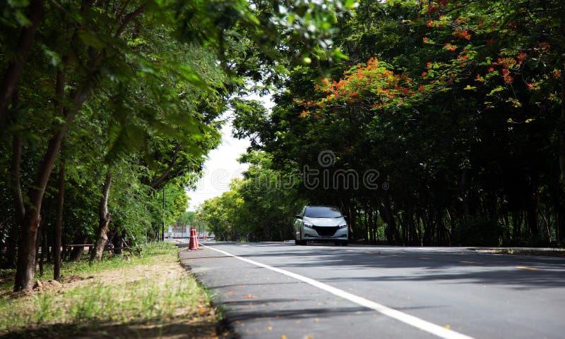 vihicle elétrico que conduz na maneira de estrada com árvore verde fotos de stock royalty free