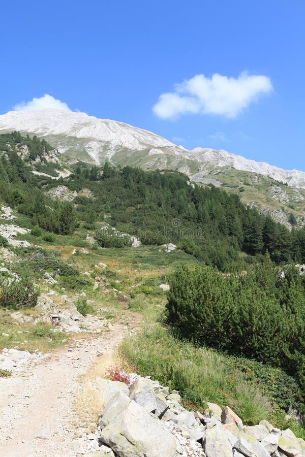 Vihren maximal, montagne de Pirin, Bansko, Bulgarie, Europe de l'Est image libre de droits