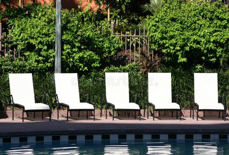 Vijf chaise zitkamerstoelen stock afbeelding