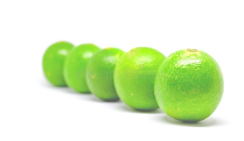 Vijf groene kalk op witte achtergrond royalty-vrije stock fotografie