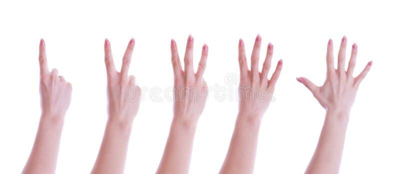 Vijf handen royalty-vrije stock afbeeldingen