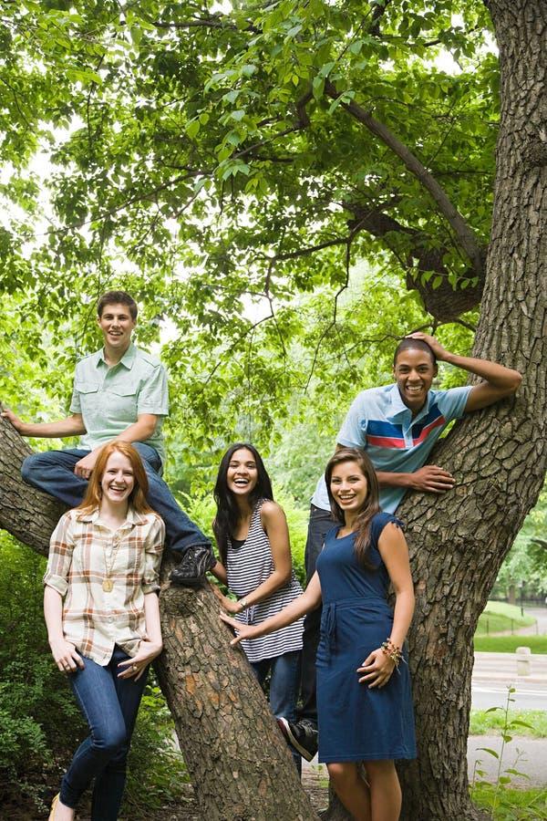 Vijf jonge vrienden rond een boom royalty-vrije stock foto's