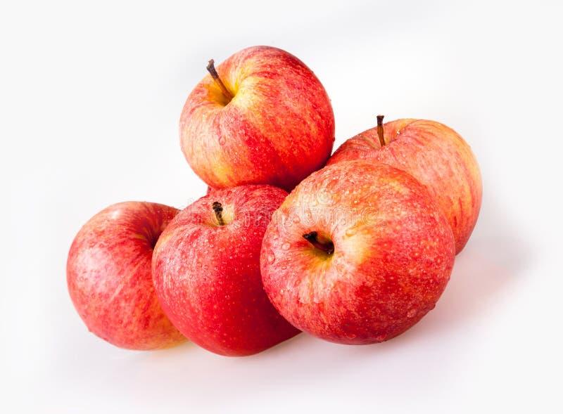 Vijf rode appelen stock fotografie