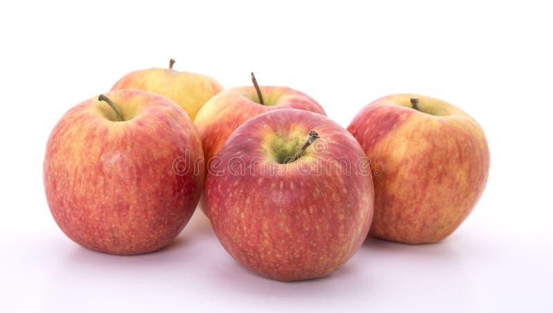 Vijf rode appelen stock foto's