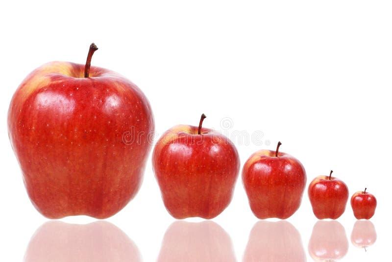 vijf rode die appelen op wit worden geïsoleerd royalty-vrije stock foto