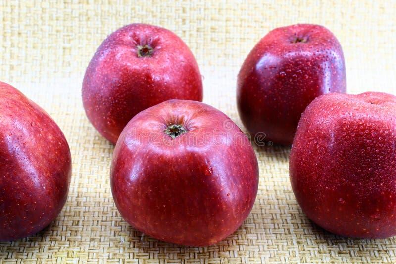 Vijf rode verse appelen met waterdalingen stock foto
