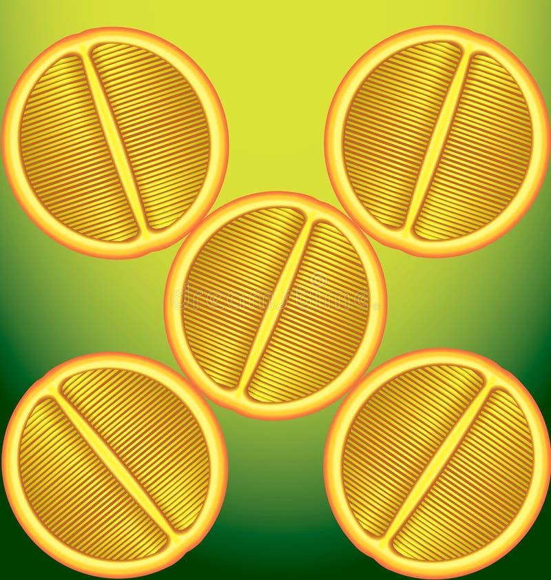 Vijf sinaasappelen een longitudinale sectie over een groene achtergrond vector illustratie