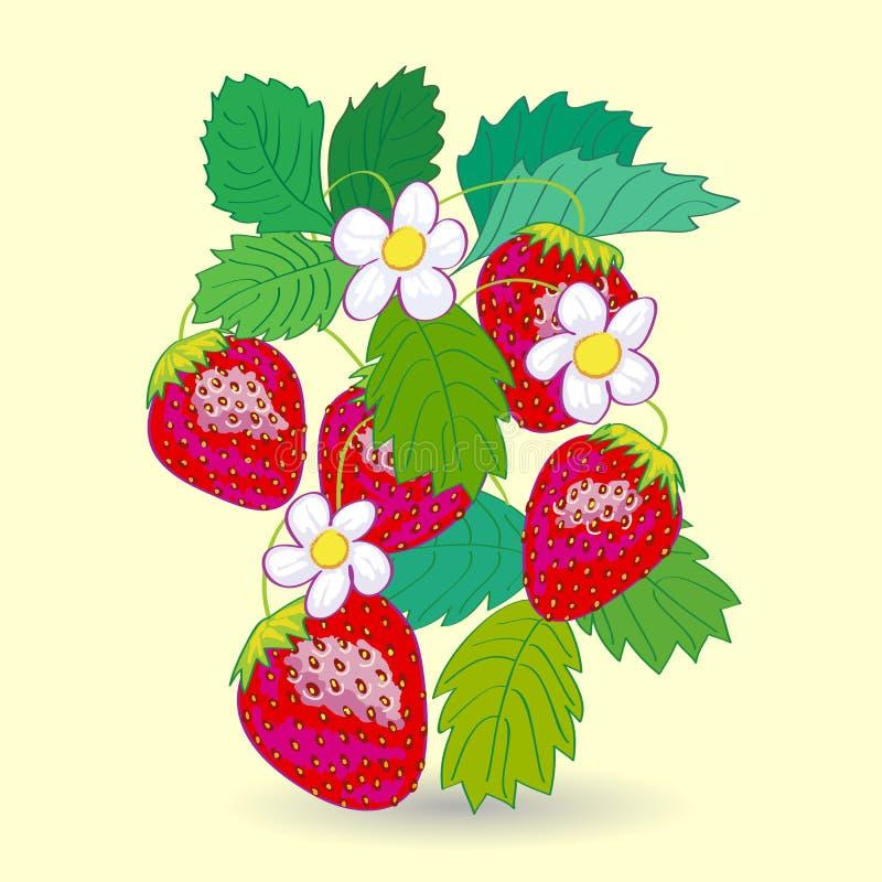 Vijf Strawberrys met Bladeren royalty-vrije illustratie
