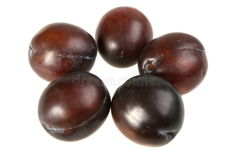 Vijf van donker-purpere pruimen. royalty-vrije stock foto
