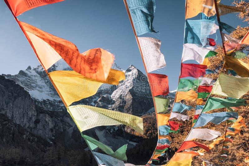 Vijf vlaggen die van het kleurengebed met Xiannairi-berg in natuurreservaat van de herfst het bosyading vliegen royalty-vrije stock afbeelding