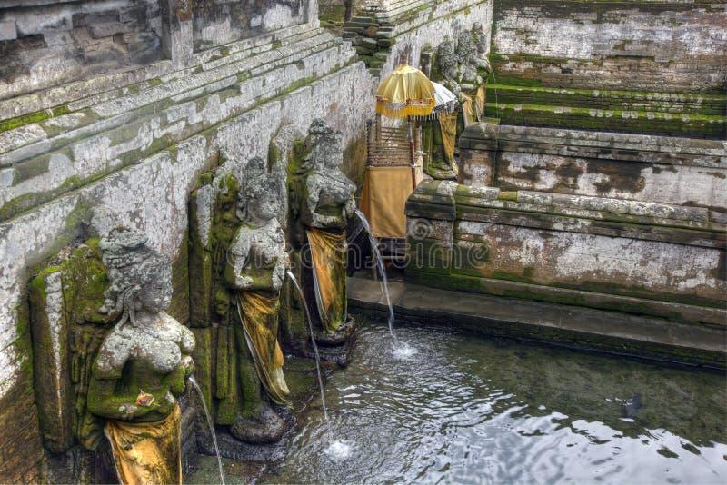 Vijver bij de Tempel van Goa Gajah, Bali, Indonesië stock fotografie