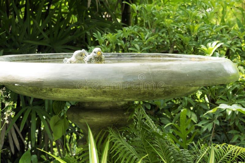 Vijver met kleine valse vogels royalty-vrije stock afbeeldingen